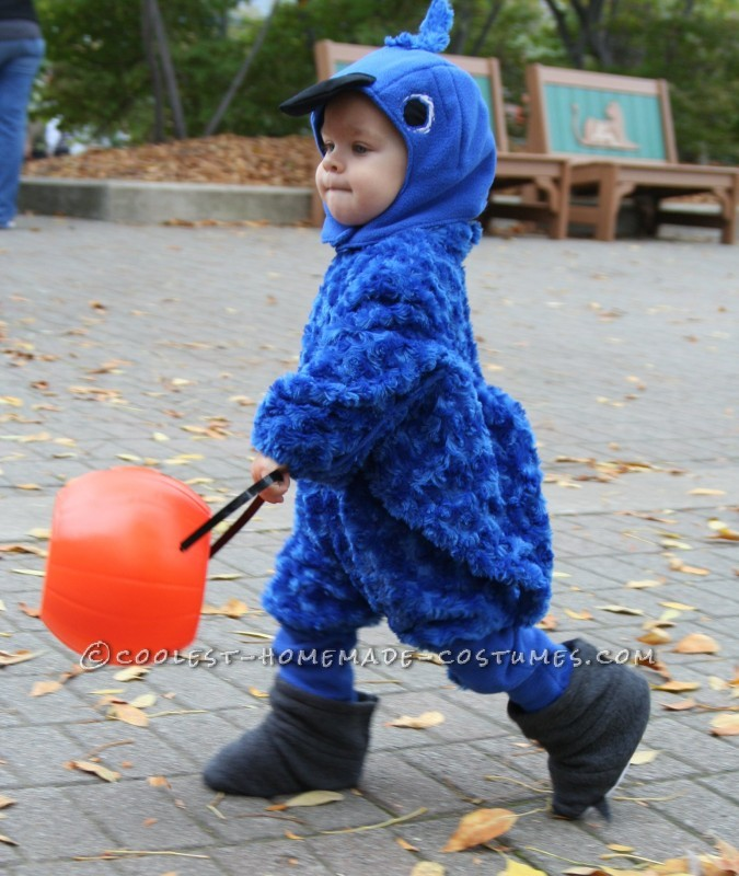Homemade Baby Blue Macaw Costume