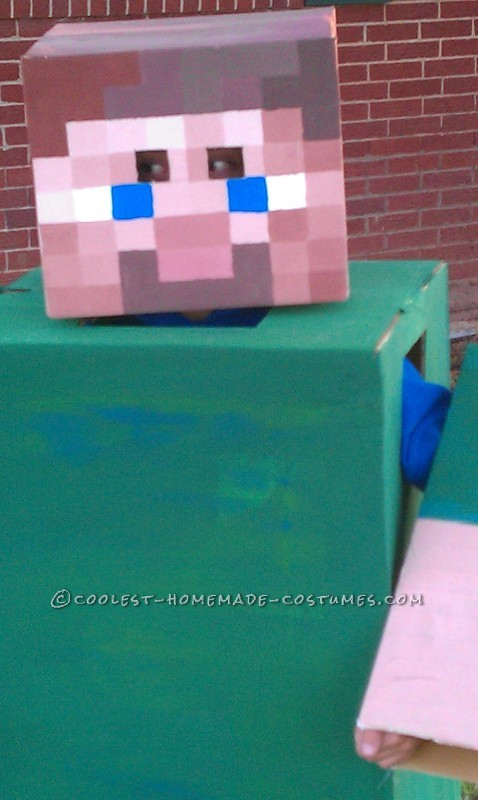 Coolest Homemade Minecraft Costume