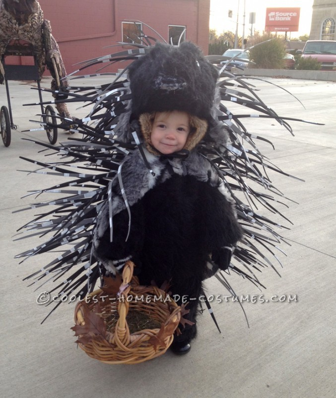 Homemade Prickly Toddler Porcupine Costume for a Girl: This is my daughter's porcupine costume from this year. I had narrowed her costume choices down to a few and showed her some pictures of them. She g