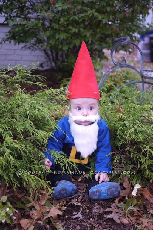 Cutest Baby Gnome Costume - 2