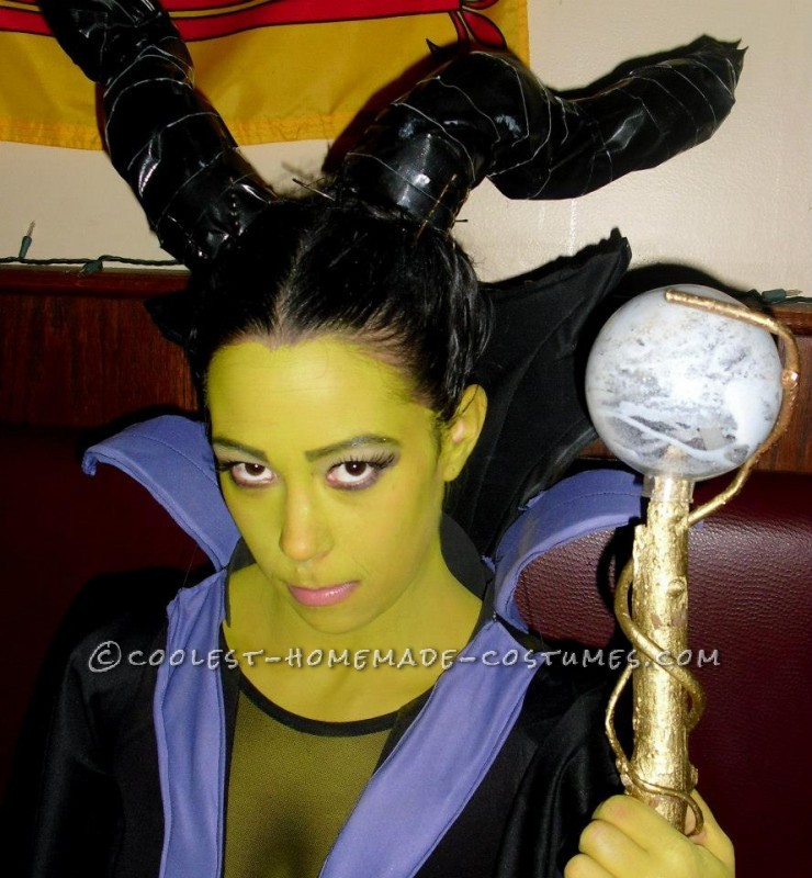 Fantastic Female Disney Villains Group Costume