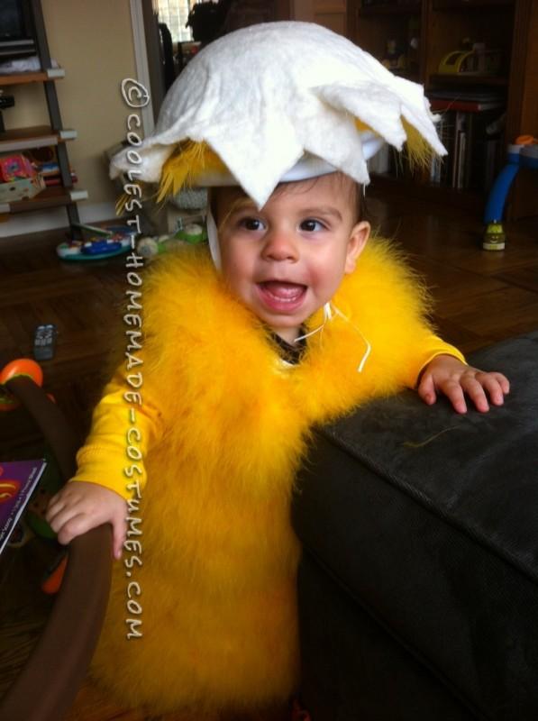 Baby Chick Jude