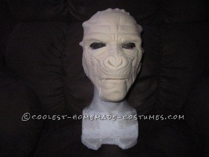 Raw mask B 4 paint and hair