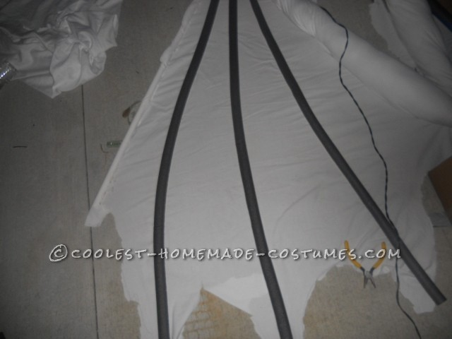 wing with ac covering for bones