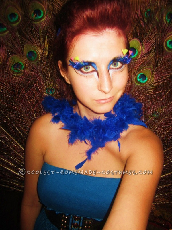 Homemade Peacock with Style - 1