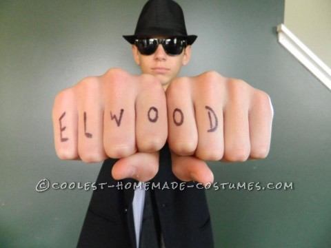 Jake and Elwood Blues Brothers Costumes