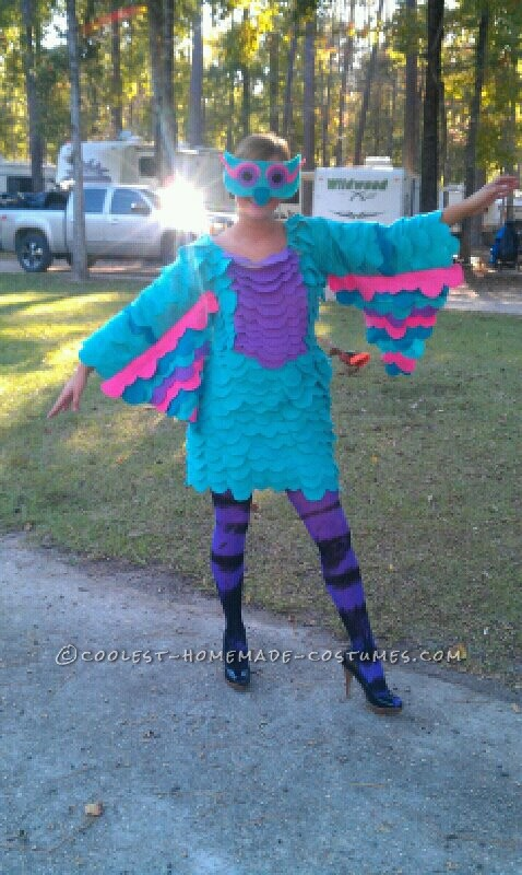 Colorful Homemade Owl Costume Costume