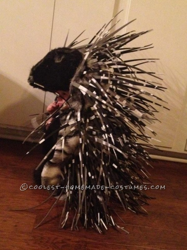 Homemade Prickly Porcupine Costume for a Girl - 1