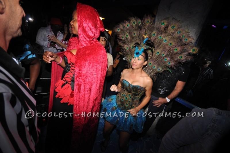 Sexy Peacock Costume - 3