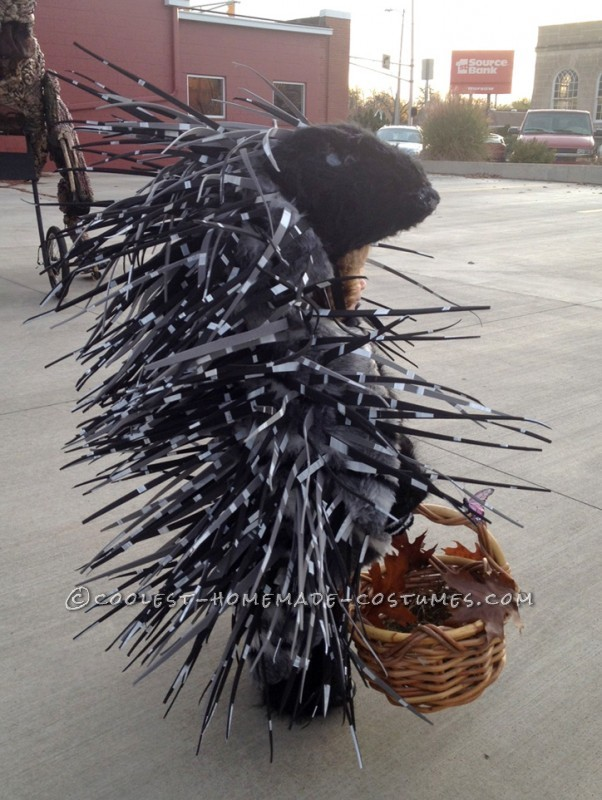 Homemade Prickly Porcupine Costume for a Girl - 4
