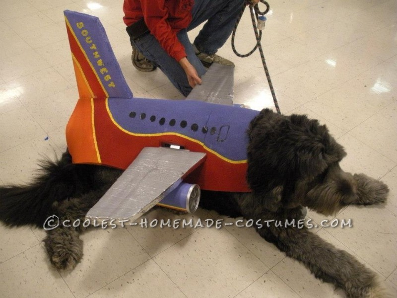 Awesome Southwest Airlines Group Halloween Costume