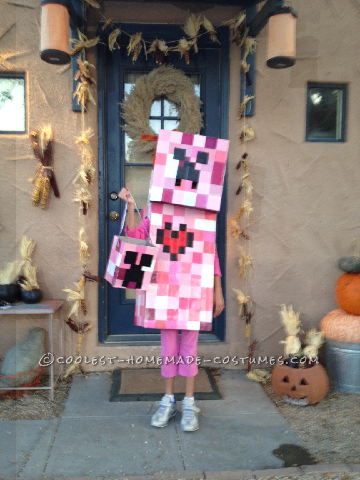 Coolest Elemental Creeper Costume from Minecraft