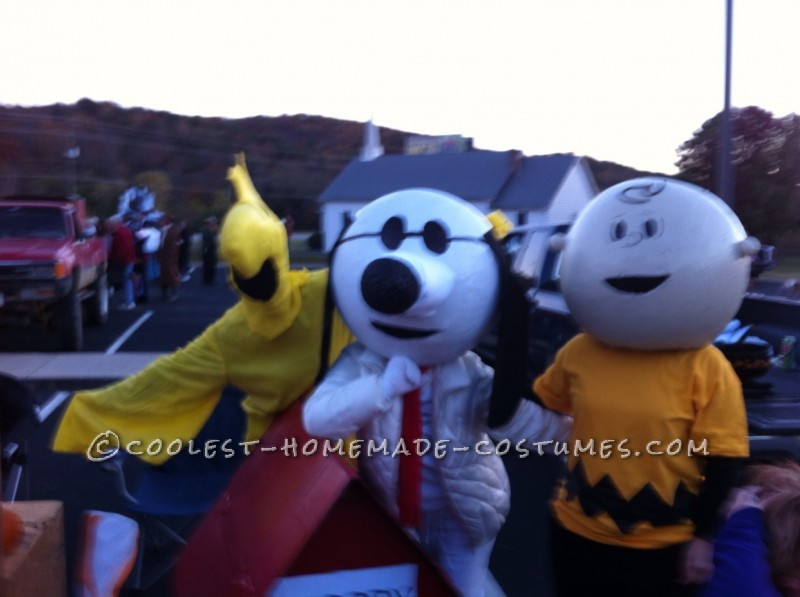 The Best Homeade Peanuts Gang Costume - 5