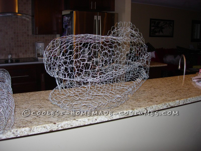 REx's mesh head shaped from chicken wire