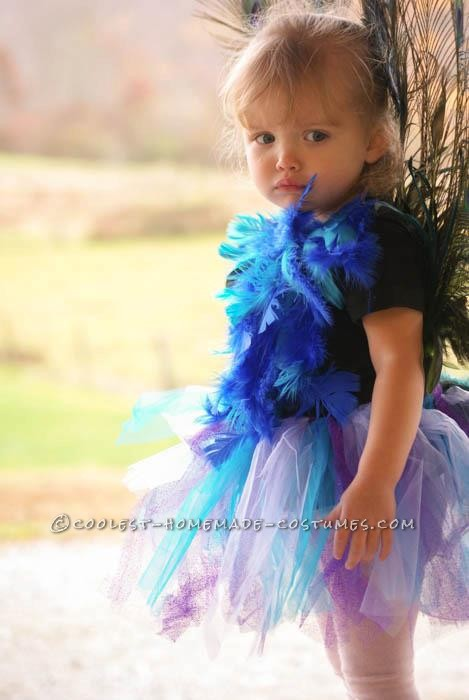 Cutest Homemade Peacock Costume for a Toddler - 5
