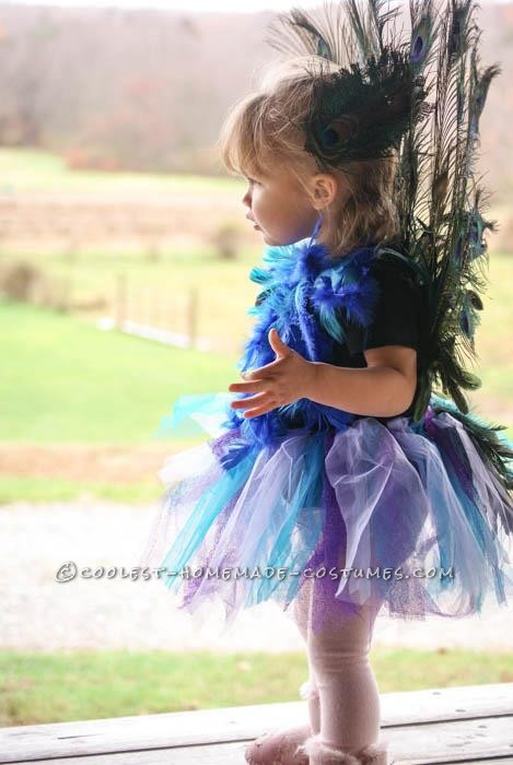 Cutest Homemade Peacock Costume for a Toddler - 4