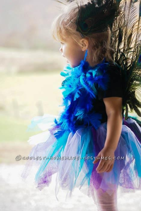 Cutest Homemade Peacock Costume for a Toddler - 1