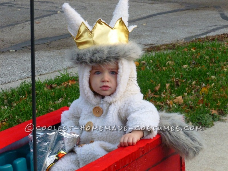 Fun Family Costume Idea: Where the Wild Things Are: On a family trip to Chicago one weekend, our family walked into a costume shop just to look around. My husband spotted a