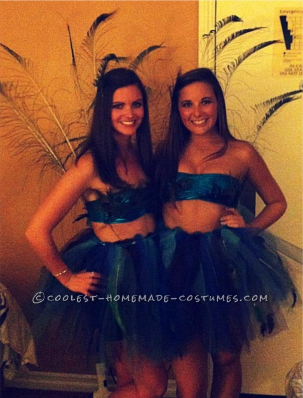 Prettiest Peacocks at the Costume Party - 1