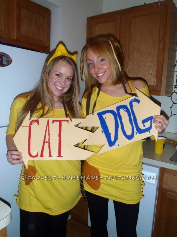 Cheap and Easy Catdog Couple Halloween Costume