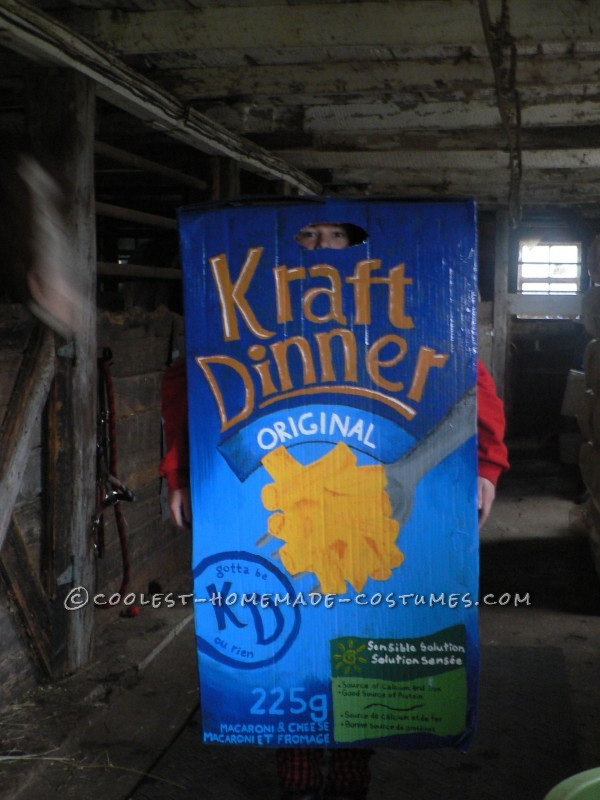 Coolest Homemade KD Kraft Dinner Halloween Costume