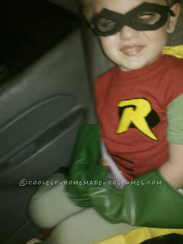 Coolest Homemade Batman, Poison Ivy and Little Robin Family Costume - 3
