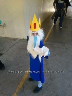 Coolest Homemade Adventure Time Costume