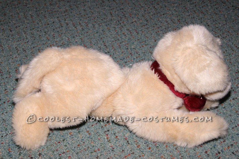 Golden retriever toy to look like puppys other half