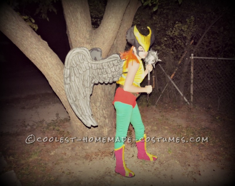 Coolest Homemade Hawk Girl Costume - 4