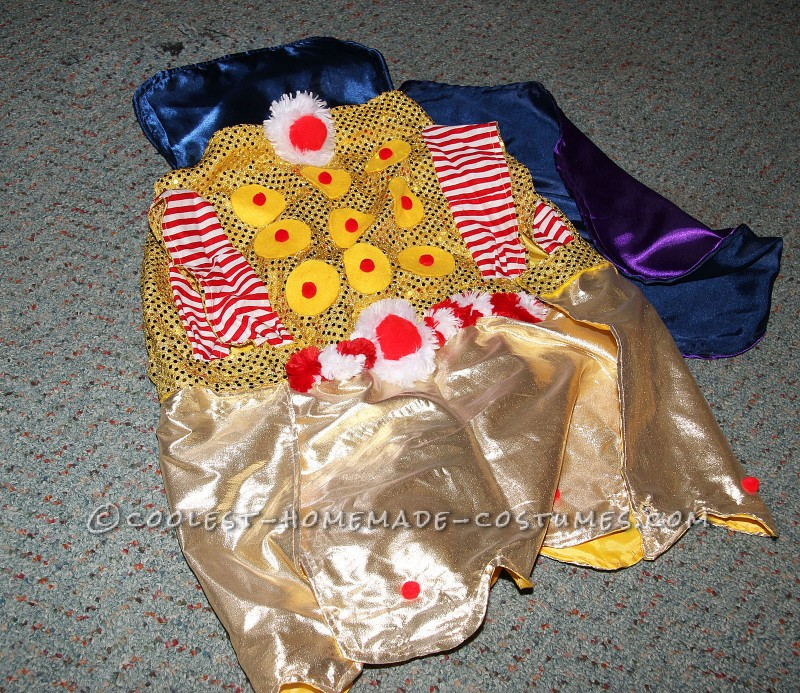 Homemade King Candy and Princess Lolly Costumes for our Pet Dogs