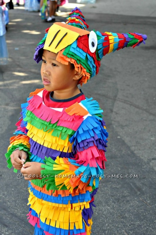 Most Awesome Homemade Pinata Costume Ever! - 1