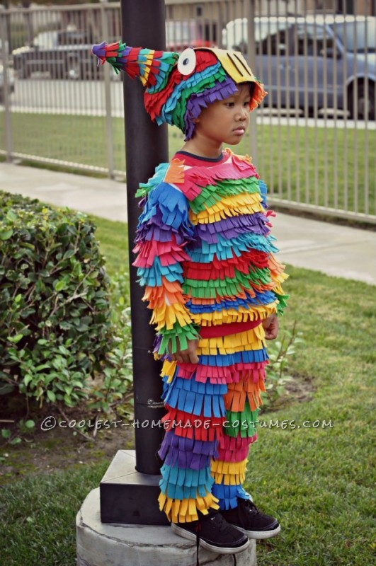 Most Awesome Homemade Pinata Costume Ever!