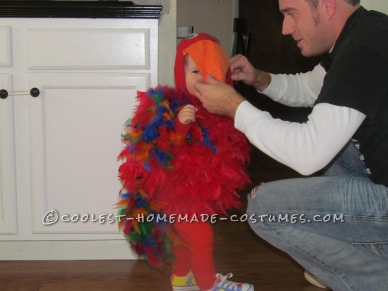 Coolest Homemade Puffy Parrot Costume for a Toddler - 1