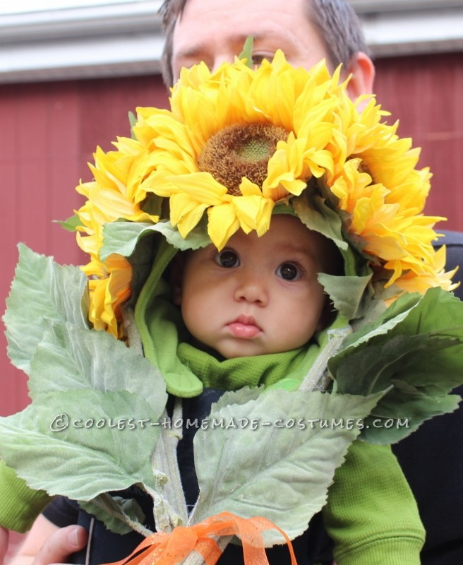 Easiest-Ever and Most-Adorable Homemade Baby Sunflower Costume