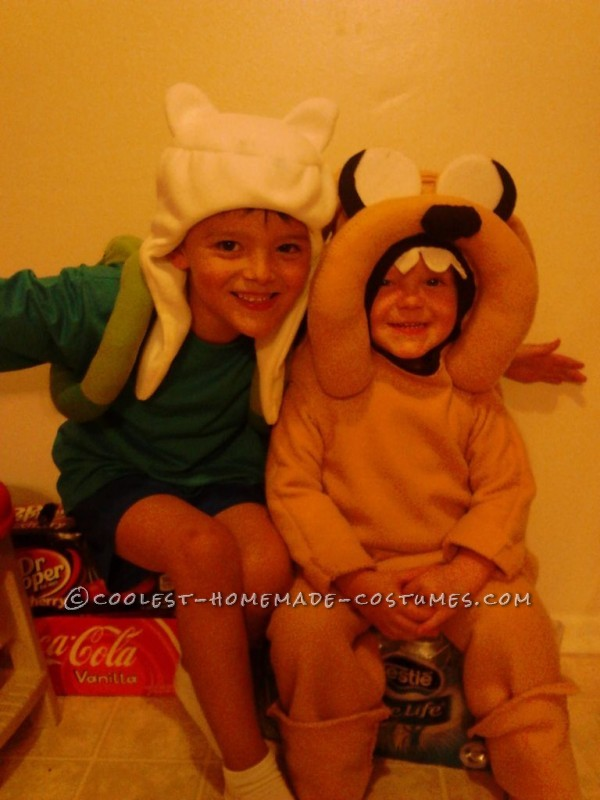 Ultimate Adventure Time Homemade Halloween Family Costume - 1