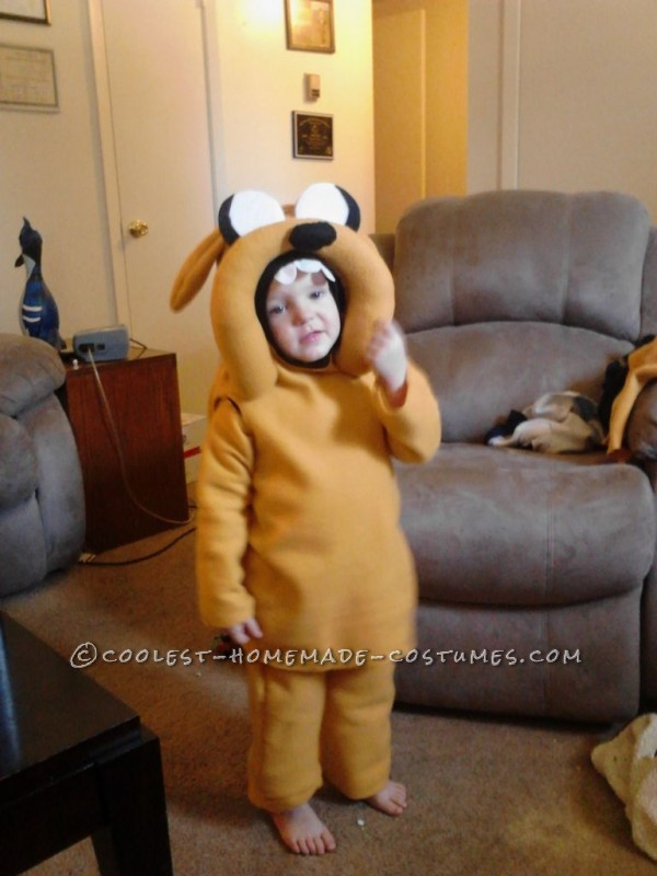 Ultimate Adventure Time Homemade Halloween Family Costume - 2
