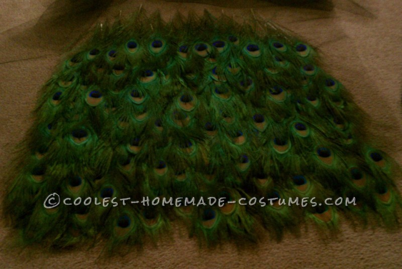 Bartender-Friendly Peacock Costume - 4