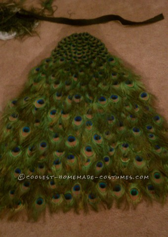 Bartender-Friendly Peacock Costume