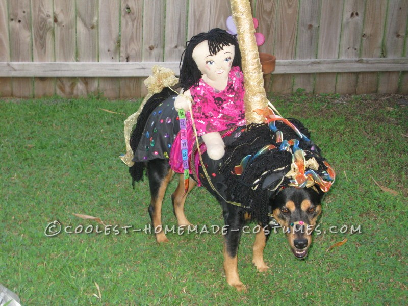 Funny Carousel Horse Costume for a Dog - 4