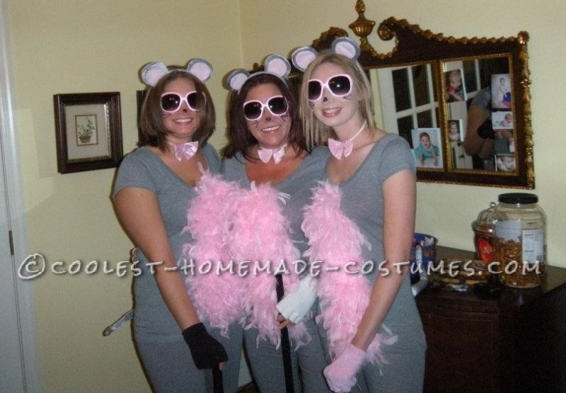 Cutest Homemade Three Blind Mice Costume for Ladies! - 1
