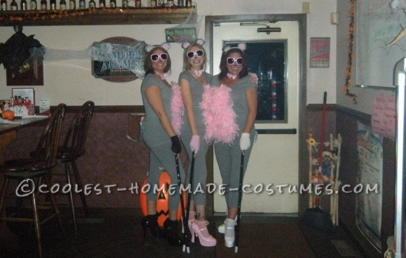 Cutest Homemade Three Blind Mice Costume for Ladies!
