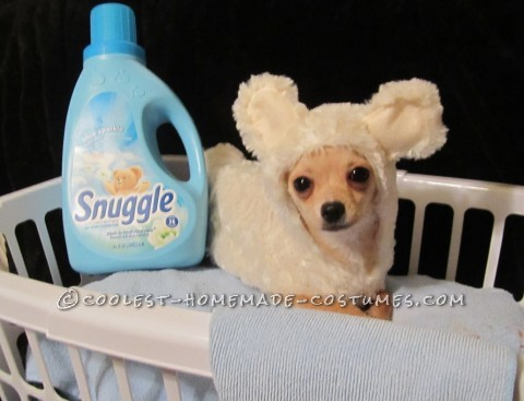 Easy, Cheap Snuggle Bear Costume For Pets