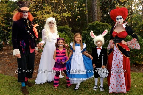 Awesome Family of Six Alice in Wonderland Group Costume