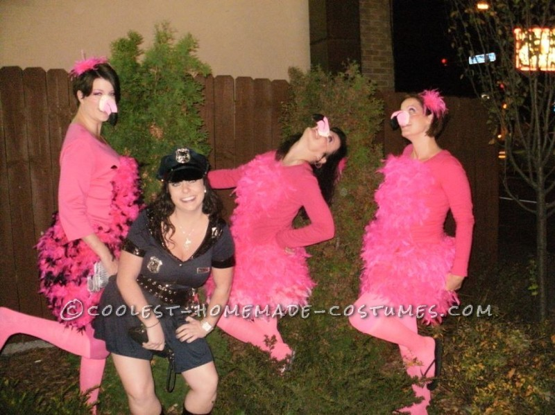 Great All Girl Group Costume Idea Pink Flamingo Yard