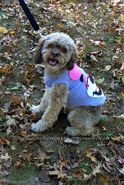 Funny Pet Dog Costumes: No Twerking Please… - 1