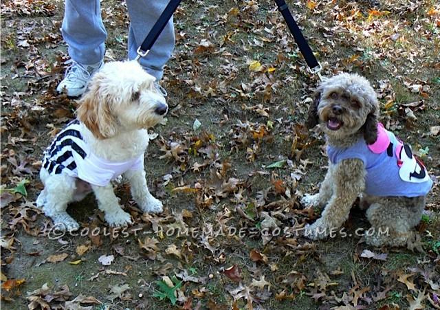Funny Pet Dog Costumes: No Twerking Please… - 3