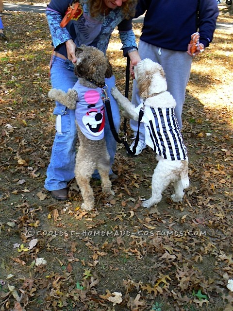 Funny Pet Dog Costumes: No Twerking Please… - 2