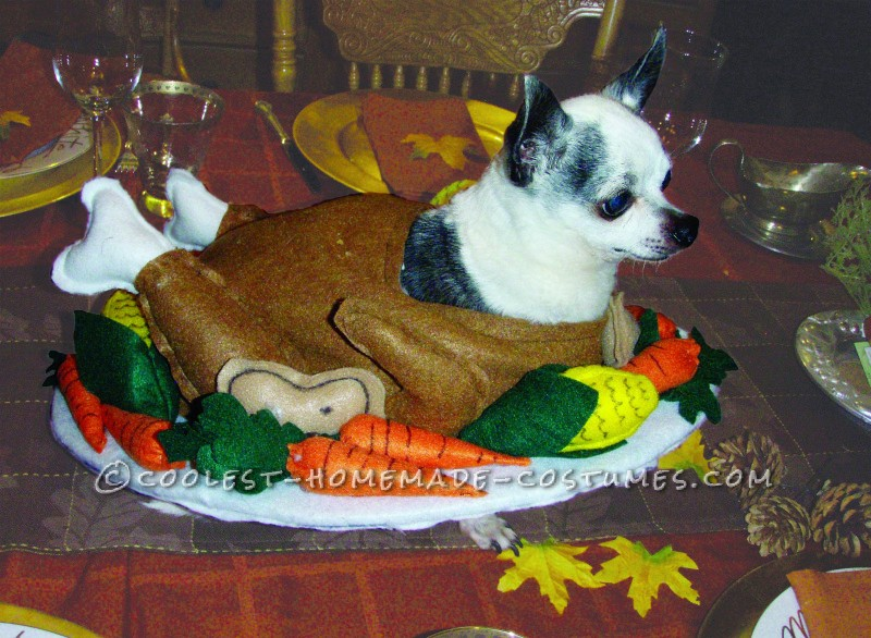 Funny Homemade Dog Costume: Gobble Til You Wobble