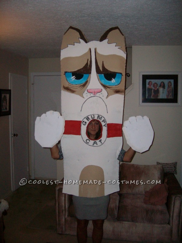 Homemade Grumpy Cat Costume from Facebook