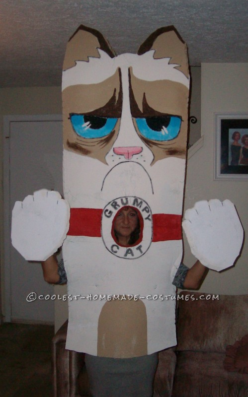 Homemade Grumpy Cat Costume from Facebook - 4